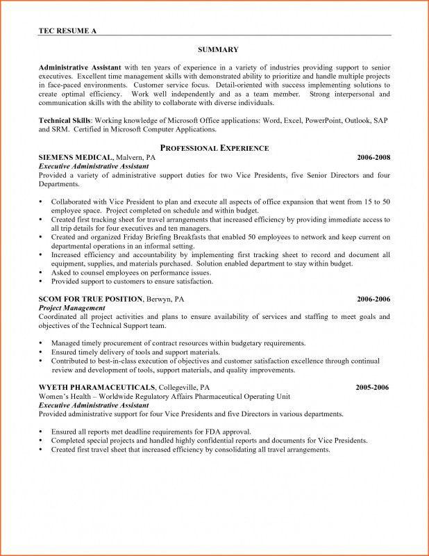 Vice President Resume Summary. senior advertising manager sample ...