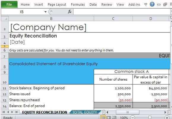 Shareholder Equity Report Template For Excel