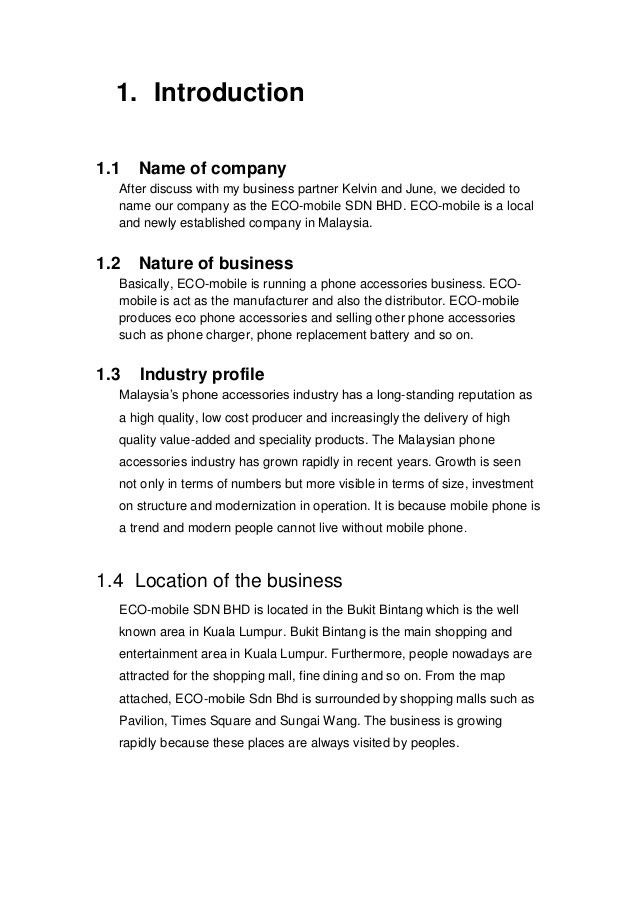 Introduction to business project 1 (business proposal)