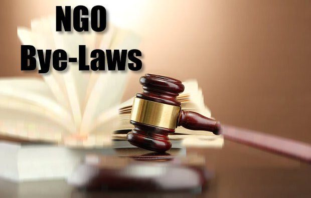 Constituting a Constitution: A sample set of NGO Bye-Laws