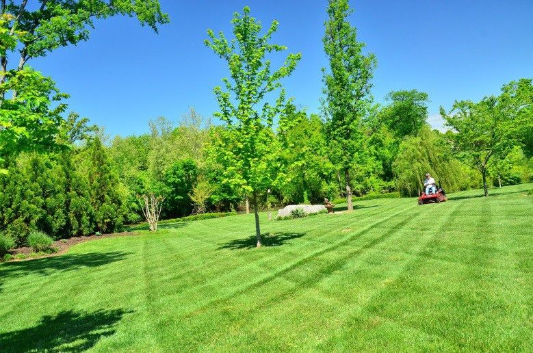 South Florida Lawn Care | Southern Green Chemical Lawn Care