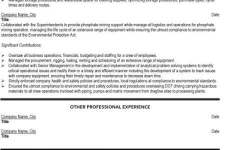 Professional Mining Resume Samples & Templates, Mining Engineer ...