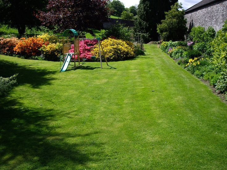 25+ best Lawn care schedule ideas on Pinterest | Lawn care, Lawn ...