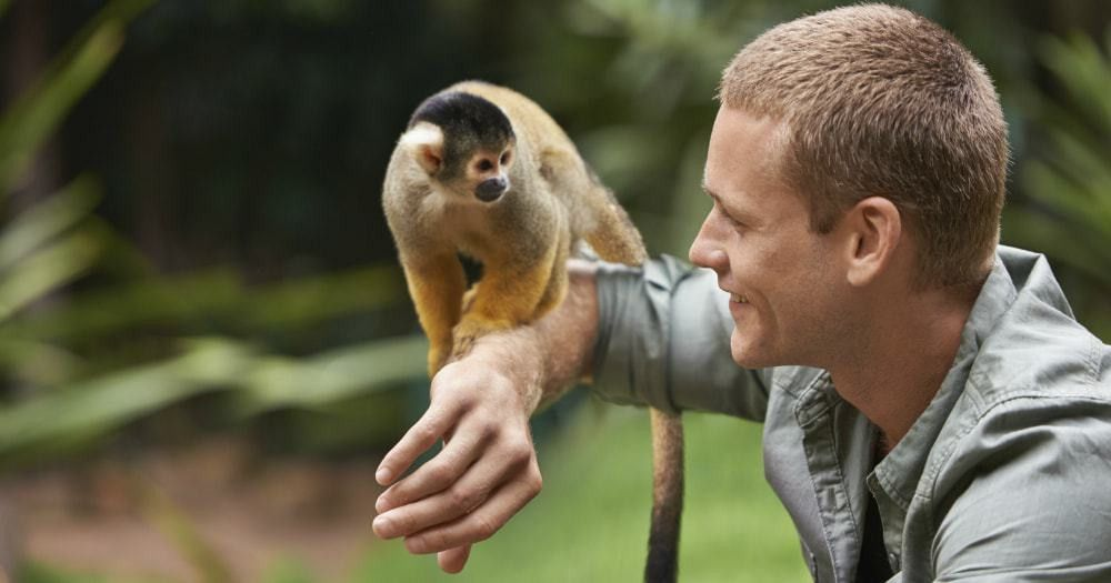 Zookeeper Courses – Frequently Asked Questions | Open Colleges