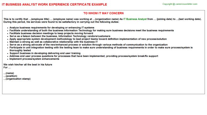 IT Business Analyst Work Experience Certificate