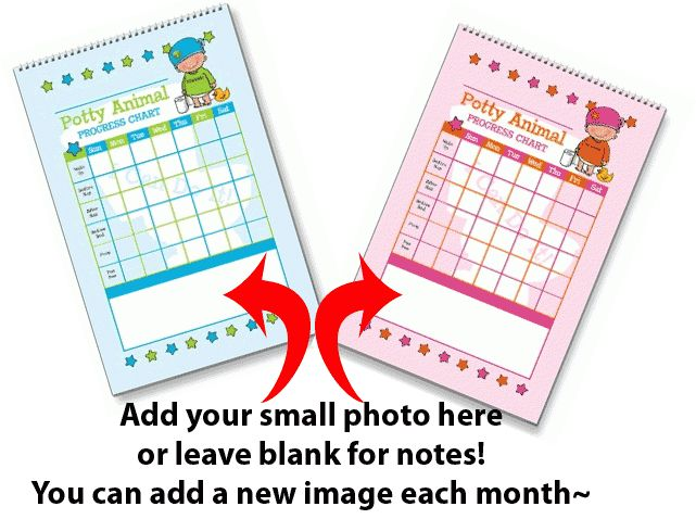Potty Training Calendar