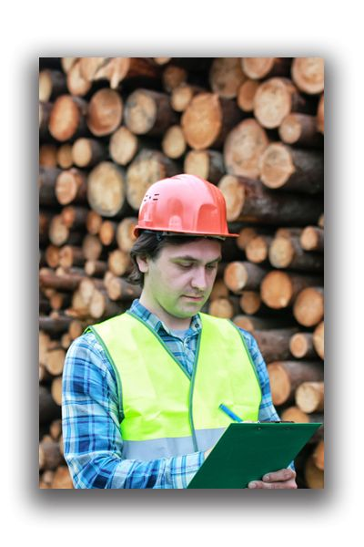 Pennsylvania & Indiana Lumbermens Mutual Insurance | Leading ...