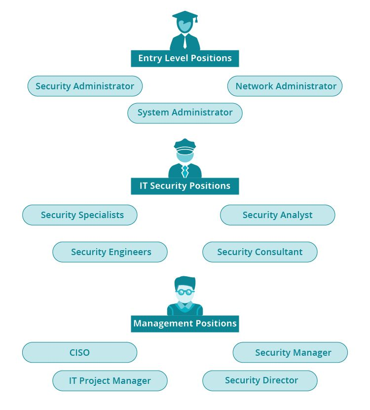 Learn How to Become a Security Auditor | Job Duties and Degrees