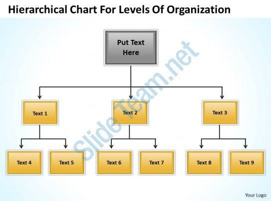 Company Structure Flow Chart Hierarchical For Levels Of ...