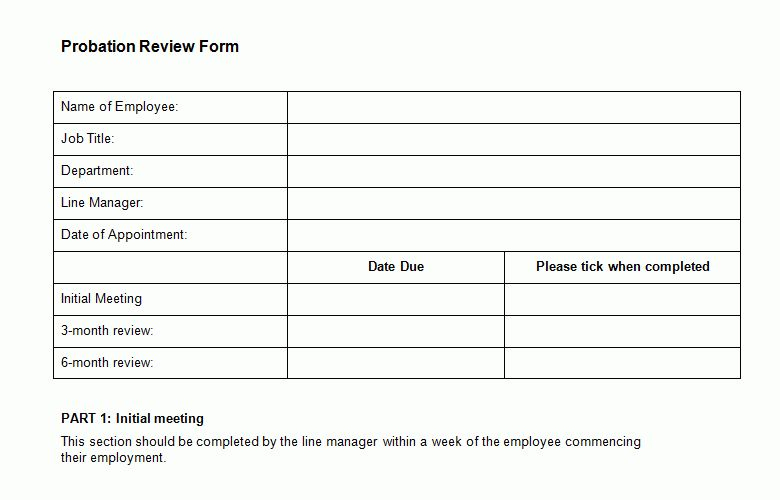 Probation Review Form Template - Bizorb