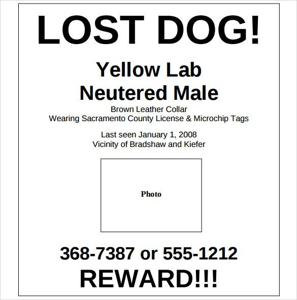 28+ Lost Dog Template Free | Pin Found Dog Flyer Printable ...