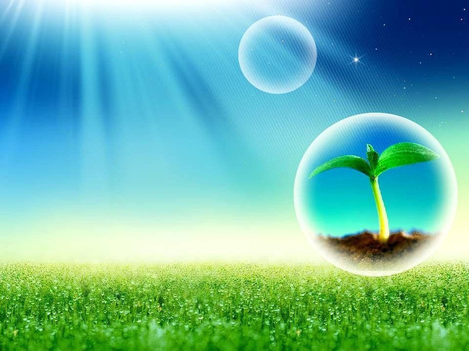 Free Spring Sunshine And Rain Grass Backgrounds For PowerPoint ...