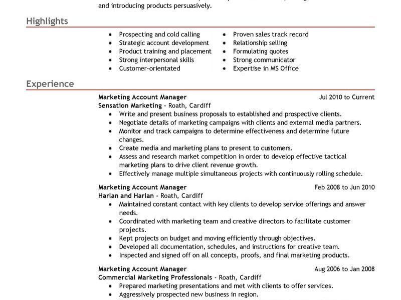 Manager Resume Examples - CV Resume Ideas