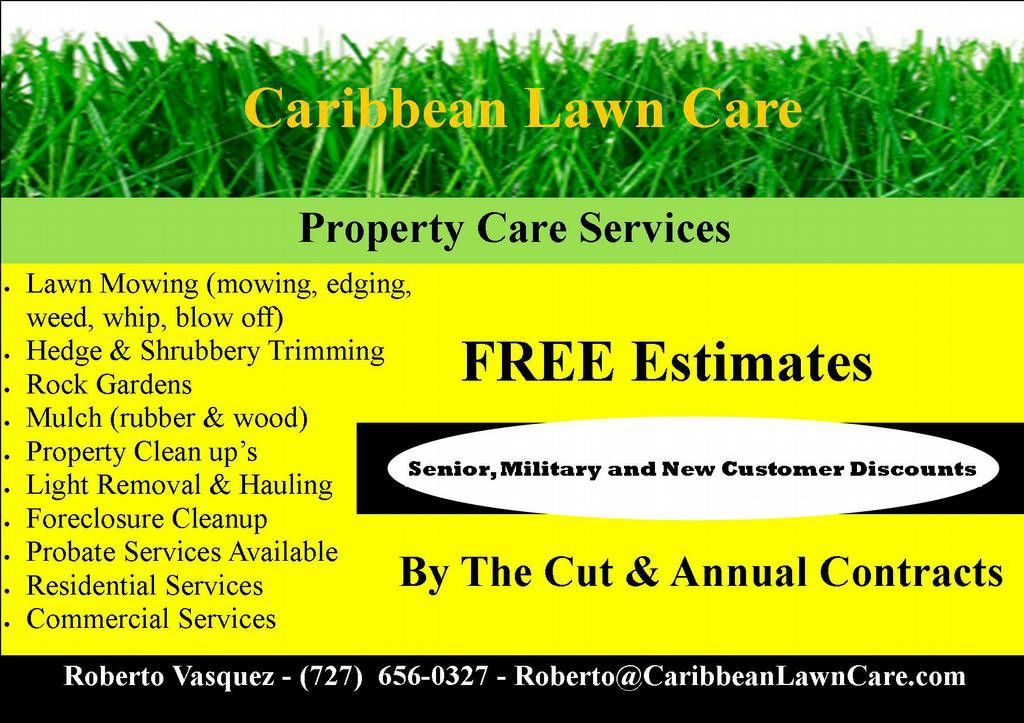 Free Printable Lawn Care Flyers