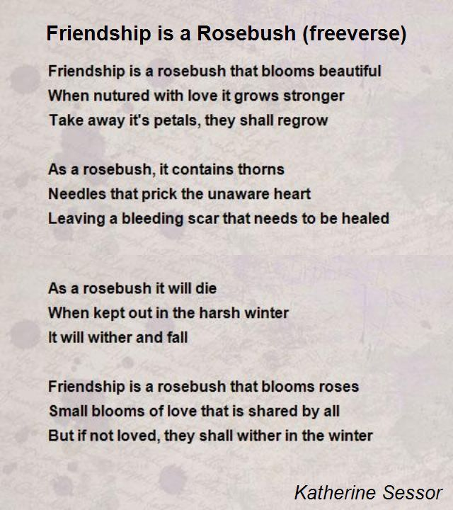 Friendship Is A Rosebush (Freeverse) Poem by Katherine Sessor ...