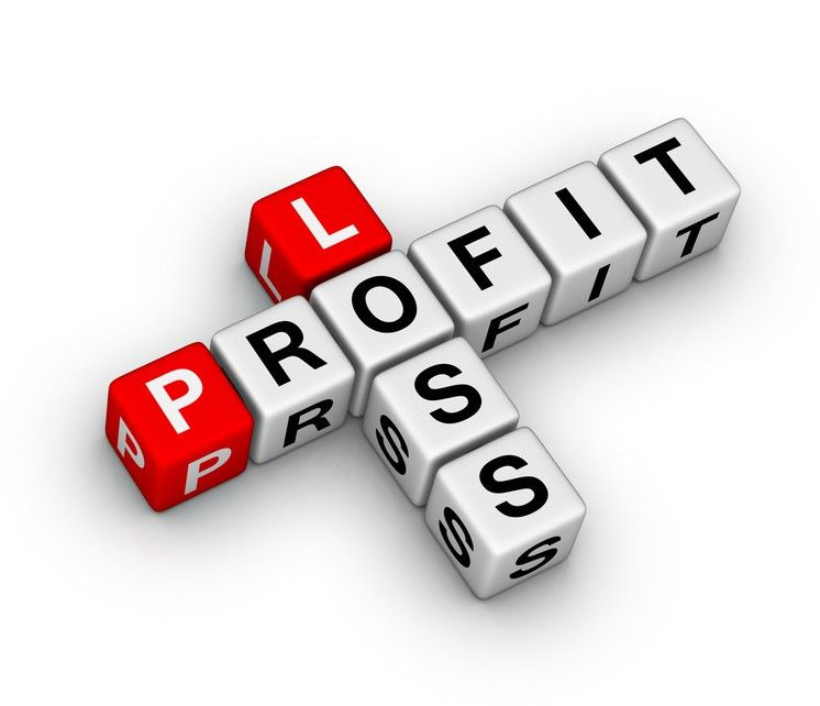 12-Month Profit and Loss Projection | SCORE