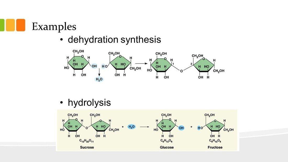 Biomolecules - BioModderfied