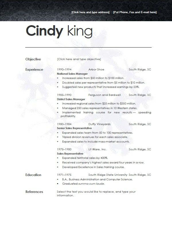 Contemporary Resume Templates | Resume Badak