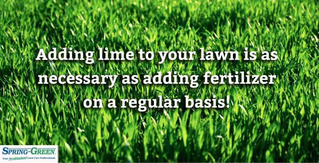 lawn care Archives - Spring Green