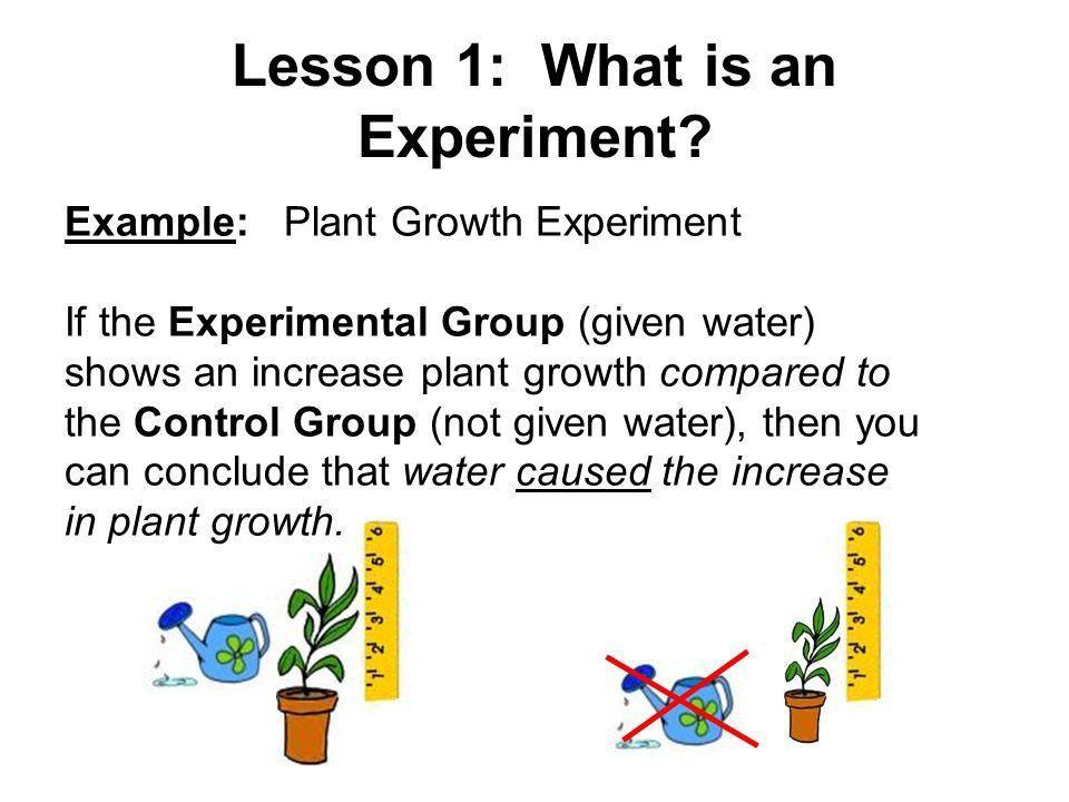 Lesson 1: Scientific Inquiry - ppt video online download
