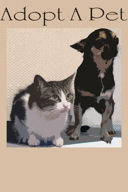 Adopt A Pet Poster Free Stock Photo - Public Domain Pictures