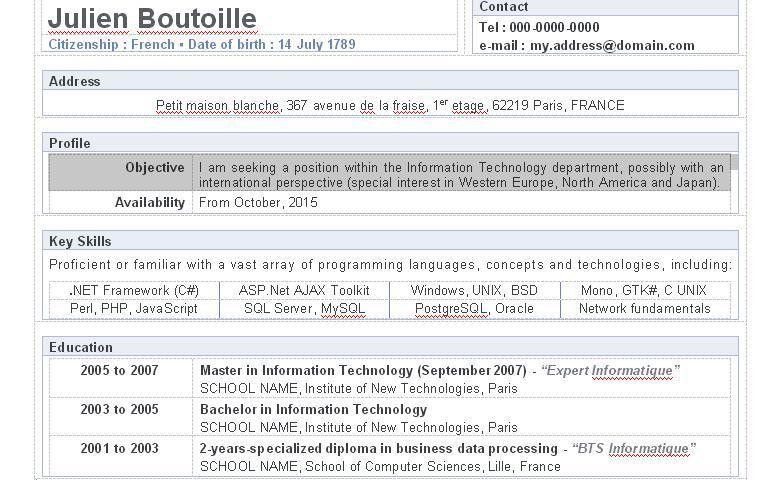 IT Programmer resume Archives - 9freeresume.com