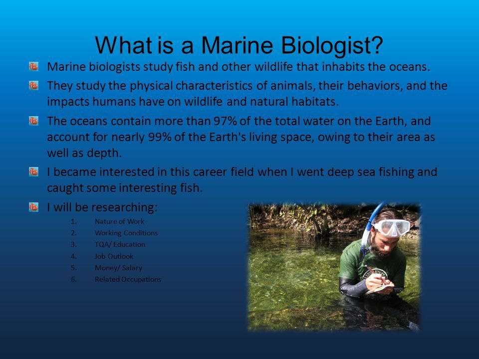 Marine Biology 5/8/2014 1st Hour Career Technology. - ppt video ...