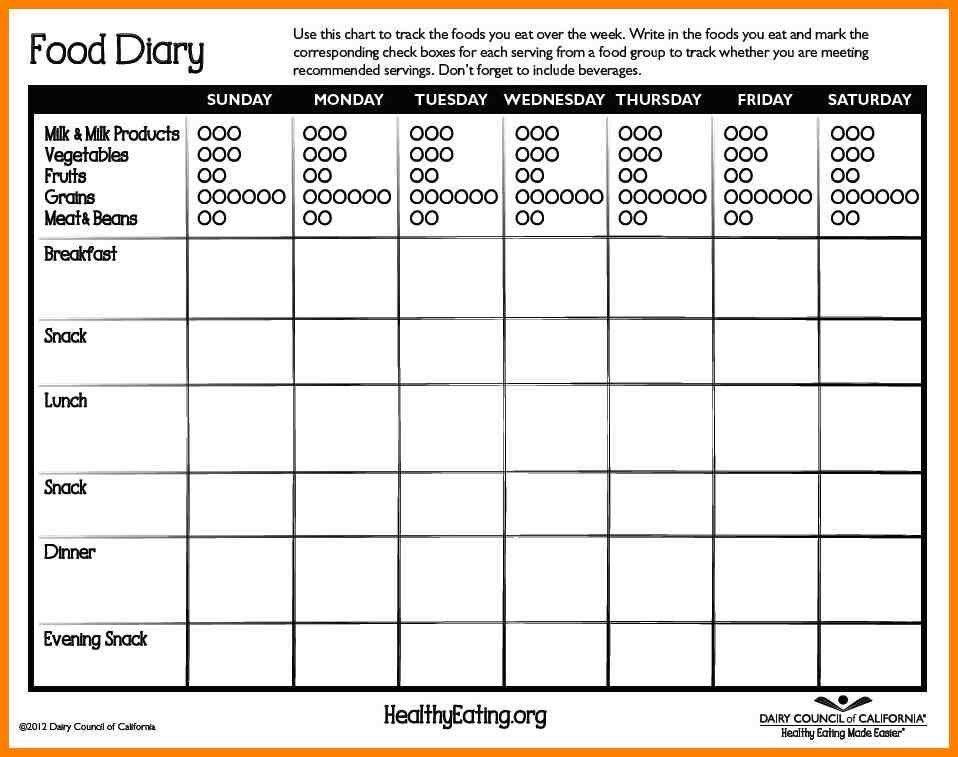 Diet Diary Template - Contegri.com