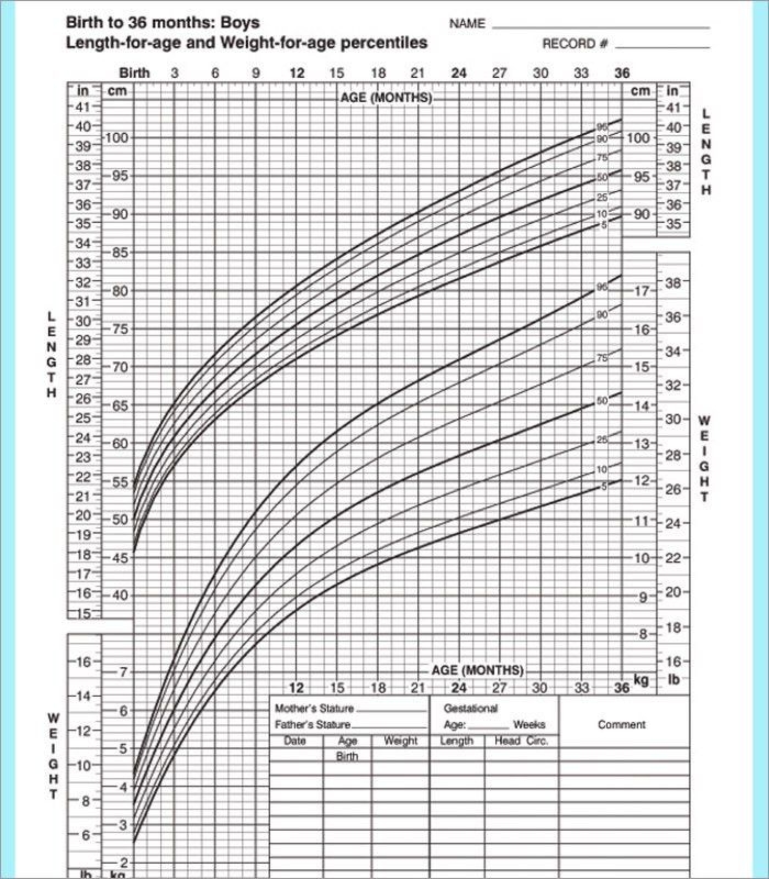 Baby Growth Chart Templates - Free Word, PDF Format | Creative ...