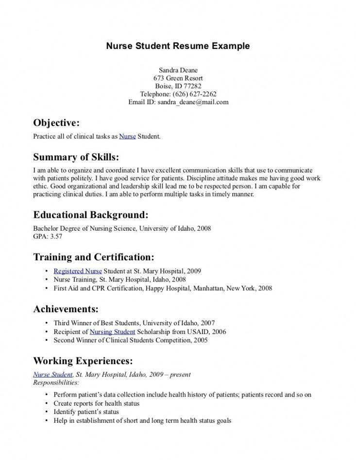 Nurse Resume Builder – Template Design