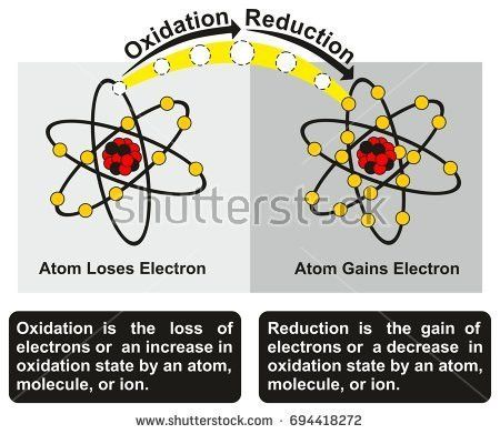 Oxidation Reduction Stock Images, Royalty-Free Images & Vectors ...