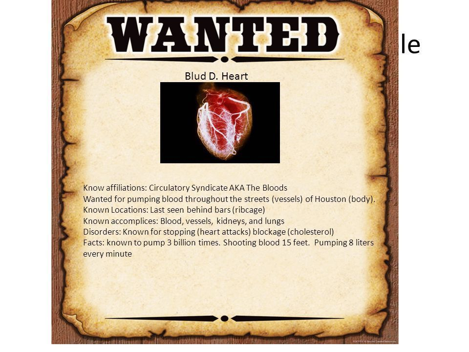 Wanted poster Body systems. Warm-up Which of the following is the ...