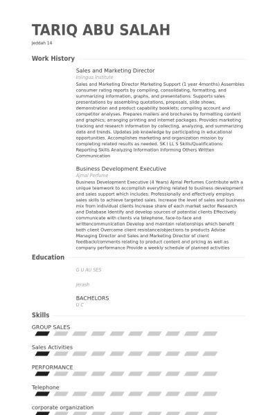 Sales And Marketing Director Resume samples - VisualCV resume ...