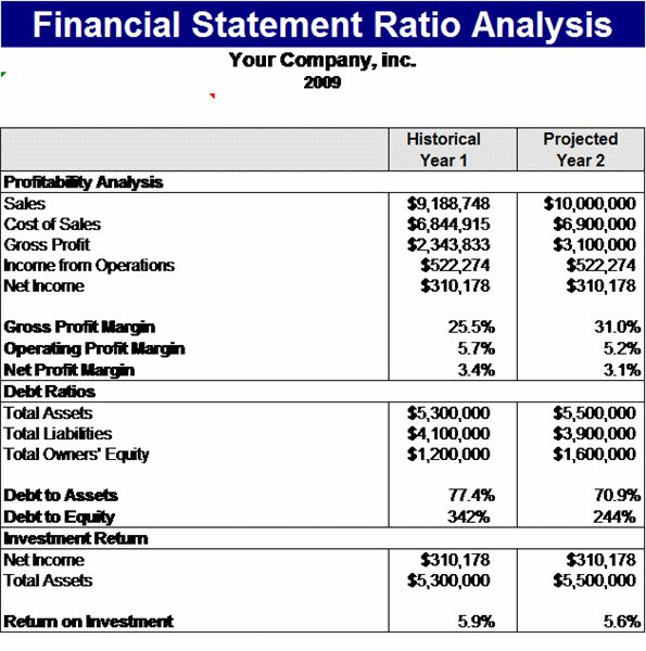Financial statement ratios analysis Template