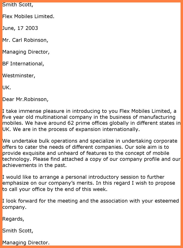 10+ introduction letter of company format   Company Letterhead