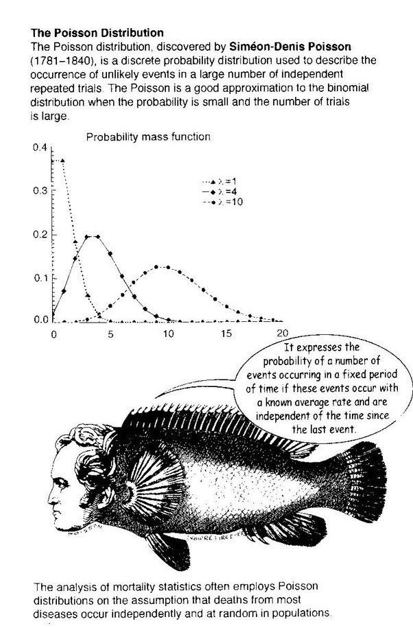 ☆ What Is a Poisson Distribution Example? - Quora