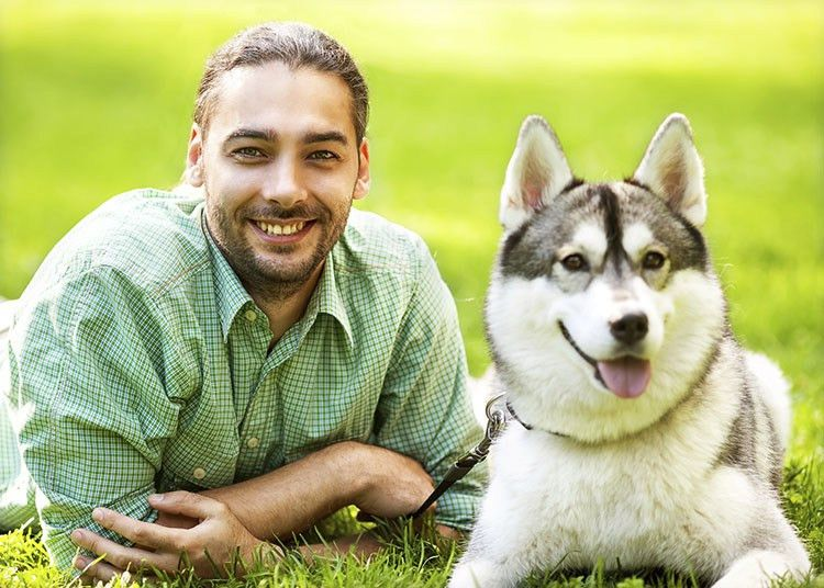How to Become a Successful Dog Trainer