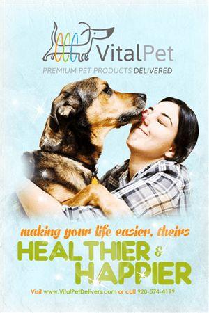 Dog Poster Design Galleries for Inspiration