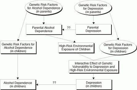 Effects of the Interaction Between Genotype and Environment ...
