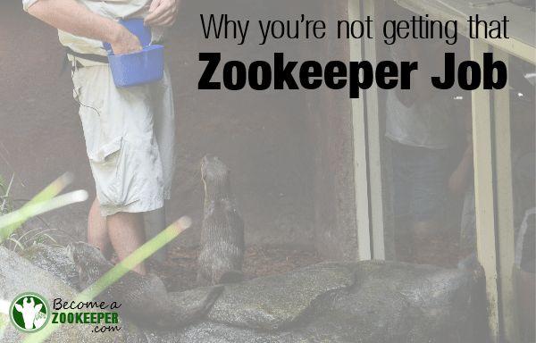 Online Zookeeper School. Captive Animals Certificate Iii And Iv ...