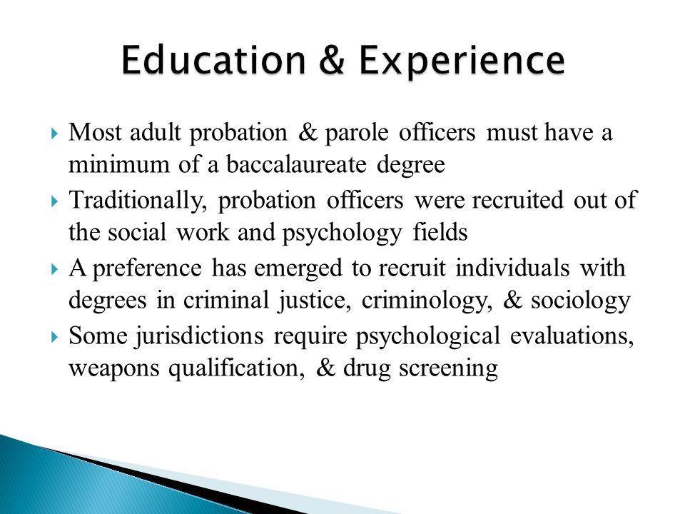 Career Pathways in Community Corrections.  Carl Klockars (1972 ...