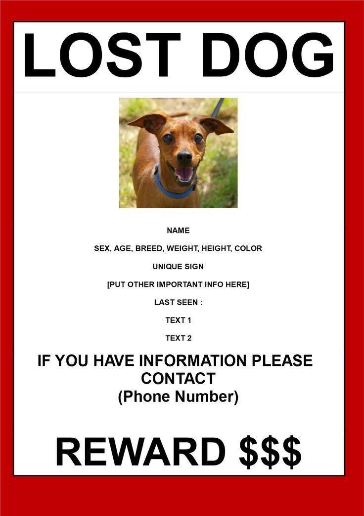 Lost Dog Sign Template - Contegri.com