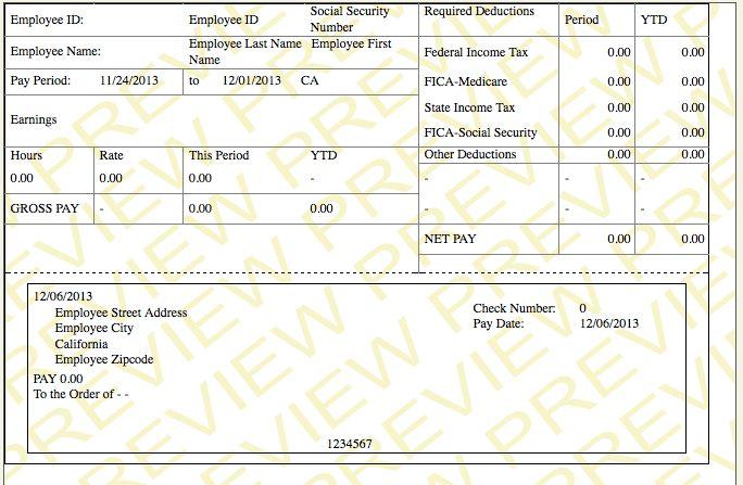 paycheck stub template - PayCheck Stub Online .com