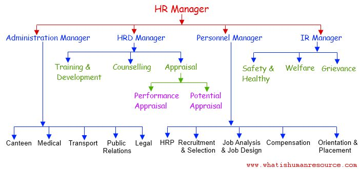 HR Manager- Key responsibilities and qualities - Human Resource l ...