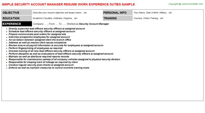 Security Account Manager Resume Sample