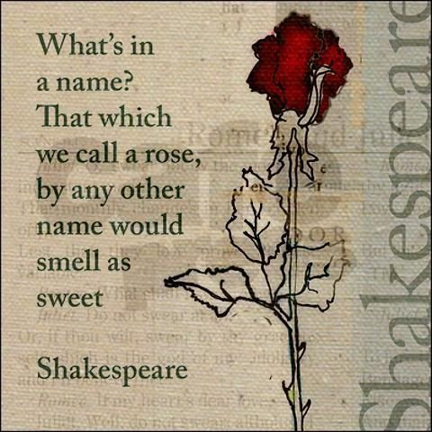 The 25+ best Literary allusion ideas on Pinterest | Examples of ...