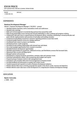 Business Development Manager Resume Sample | Velvet Jobs