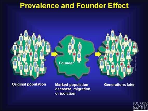 36. Prevalence and Founder Effect