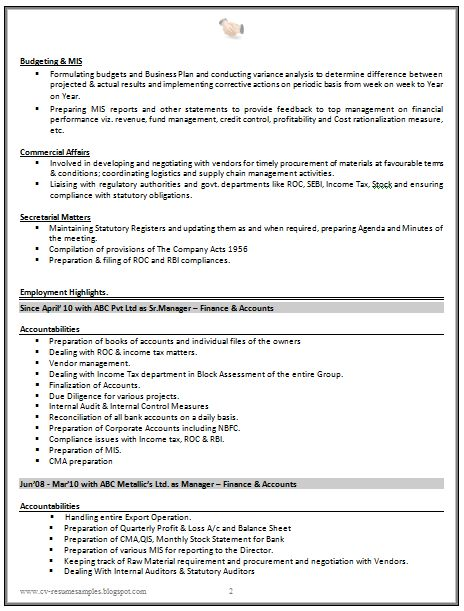 Sample CV For Finance Manager  CV Formats  Templates