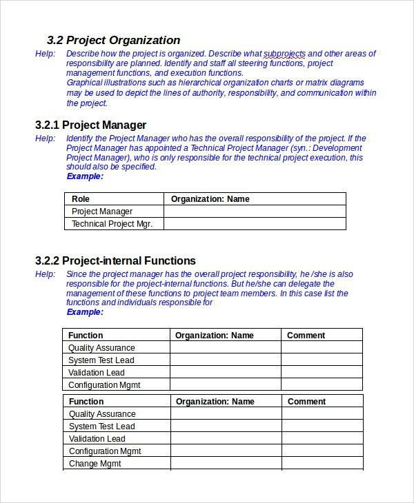 Sample IT Project Plan Template   6+ Free Documents Download In .